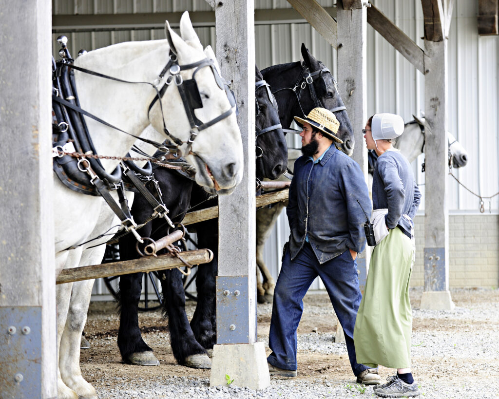 SUGARCREEK, OHIO –  May 20, 2015:  Amish couple watching over th
