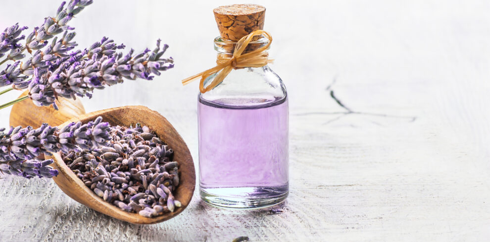 Glass Bottle Of Lavender Essential Oil With Fresh Lavender Flowe