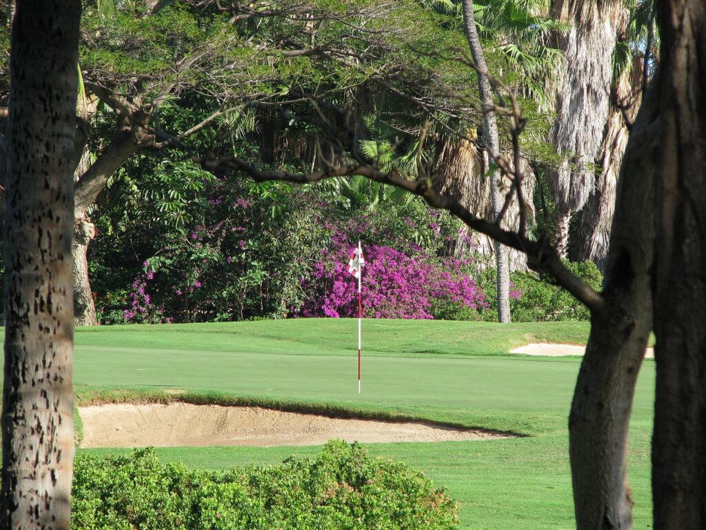 Green At Kaanapali Golf Course