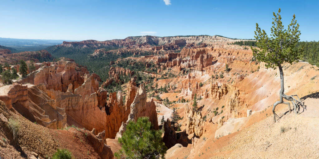 Hoodoo And Eroded Cliff Formations At Bryce Canyon National Park