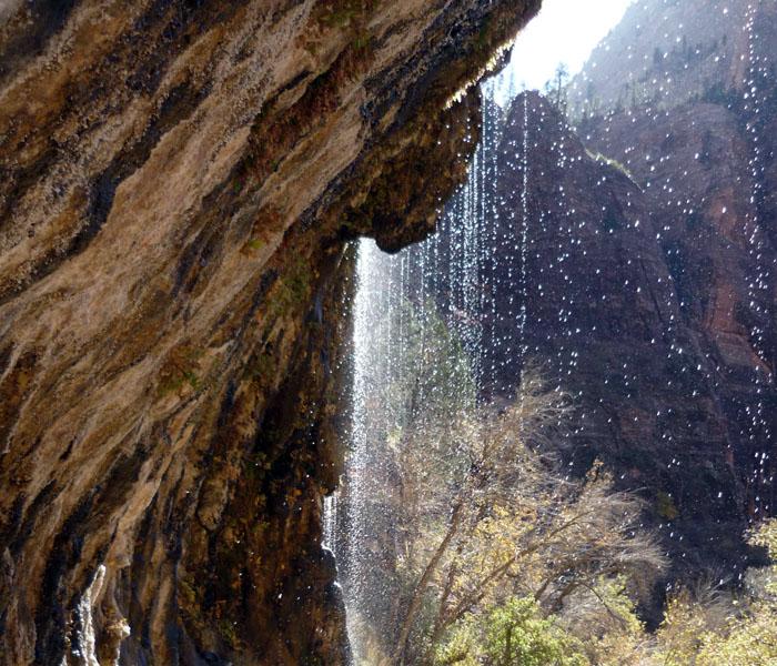 zionweepingrock